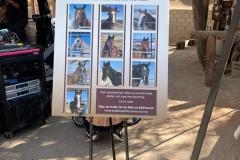 2nd Annual Cowboy Bash Fundraiser