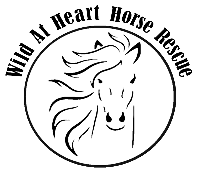 Wild At Heart Horse Rescue